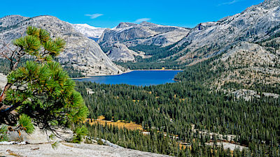 Tenaya Lake in Yosemite