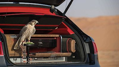 Bentley Betnayga Falconry Mulliner