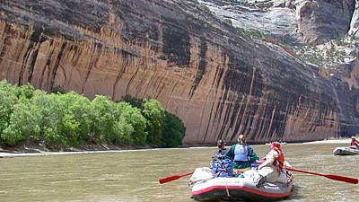 Tiger Wall Yampa River