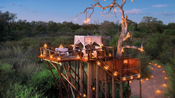 Chalkley Treehouse, Lion Sand Game Reserve
